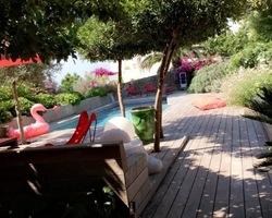 + qu'un jardin... – Sète - Contrat d'entretien annuel à Sète sur le Saint clair
