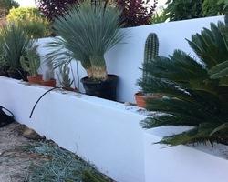 + qu'un jardin... – Sète - RÉAMÉNAGEMENT D'UN TOUR DE PISCINE
