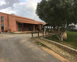 + qu'un jardin... – Sète - Contrat d'entretien d'un Mas à Bouzigues