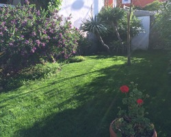 + qu'un jardin... – Sète - Placage de gazon