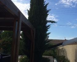 + qu'un jardin... – Sète - Taille d'un cyprès à Mireval